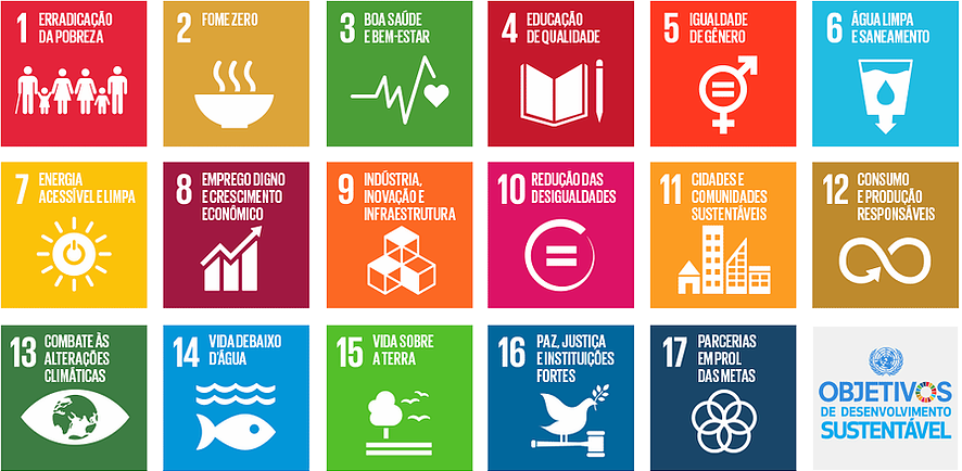 Conheça os 17 objetivos do desenvolvimento sustentável